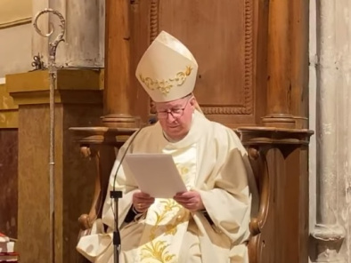 Homilía del Sr. Obispo en el Domingo XV del tiempo ordinario